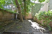 Garden at 332 West 22nd Street