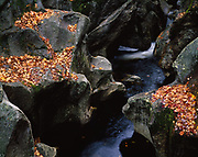 Sculptured Rocks of the Cockermouth River, New Hampshire.