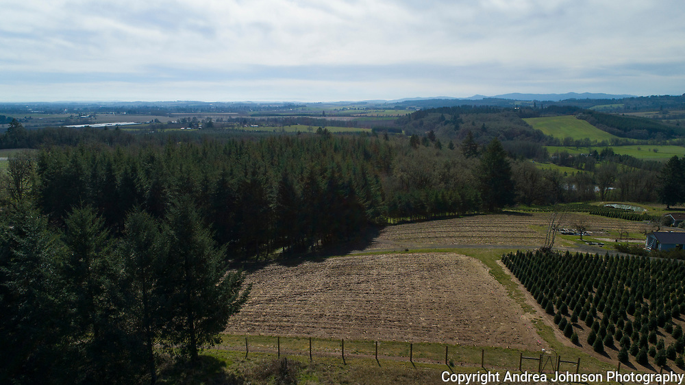 Aerial drone views over Open Claim for scouting, Willamette Valley, Oregon