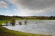 Flooded watermeadows in flood plain, Burford, Oxfordshire, The Cotwolds, England,  United Kingdom