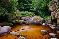 France, Finistère (29), parc naturel régional d'Armorique, Huelgoat, chaos granitique de la forêt de Huelgoat, Mare aux Sangliers // France, Finistere (29), regional natural park of Armorique, Huelgoat, granite chaos of the forest of Huelgoat