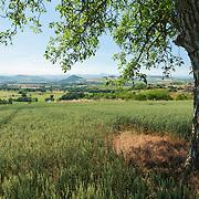 Billom aream, view from Egliseneuve de Billom