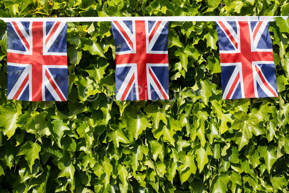 As the Coronavirus lockdown continues over the May Bank Holiday, the nation commemorates the 75th anniversary of VE Day Victory in Europe Day, the day that Germany officially surrendered in 1945 and in Dulwich, neighbours and residents emerge from their homes to party while still observing social distancing rules. Union Jack bunting hangs across a residential hedge, on 8th May 2020, in London, England.