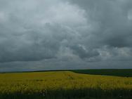 france, landcapes of the Beauce in spring   /  France ile de france paysage et culture dans la beauce au printemps