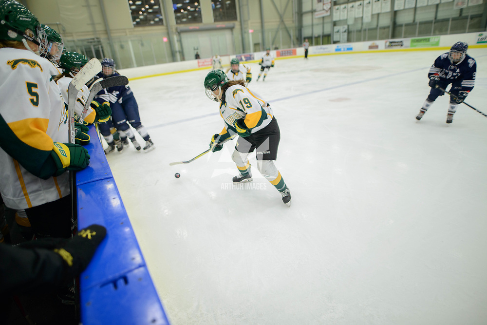 2nd year forward Sarah Hornoi (19) of the Regina Cougars in action during the Women's Hockey home game on October 14 at Co-operators arena. Credit: Arthur Ward/Arthur Images