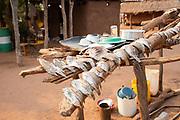 Fish are sun dried to preserve at a Tonga fishing village on Lake Kariba, Zimbabwe