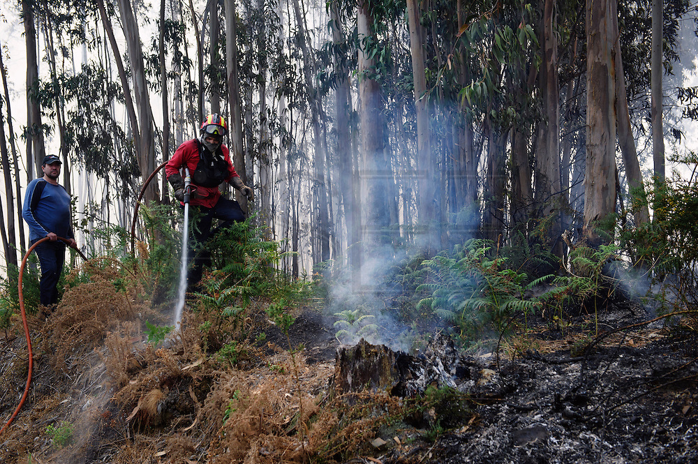 Just in August 14000 hectares fire in Portugal. The Portuguese forest composed mainly of planted eucalyptus is a clock bomb that when explode generate the most dangerous fires that a fireman can fight.