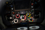 April 17, 2014 - Shanghai, China. UBS Chinese Formula One Grand Prix. Adrian Sutil (GER), Sauber-Ferrari steering wheel