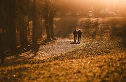 THEMENBILD - ein älteres Liebespaar beim spazieren an einem sonnigen Herbsttag, aufgenommen am 10. November 2018, Saalfelden am Steinernen Meer, Österreich // an elderly couple walking on a sunny autumn day on 2018/11/10, Saalfelden am Steinernen Meer, Austria. EXPA Pictures © 2018, PhotoCredit: EXPA/ JFK