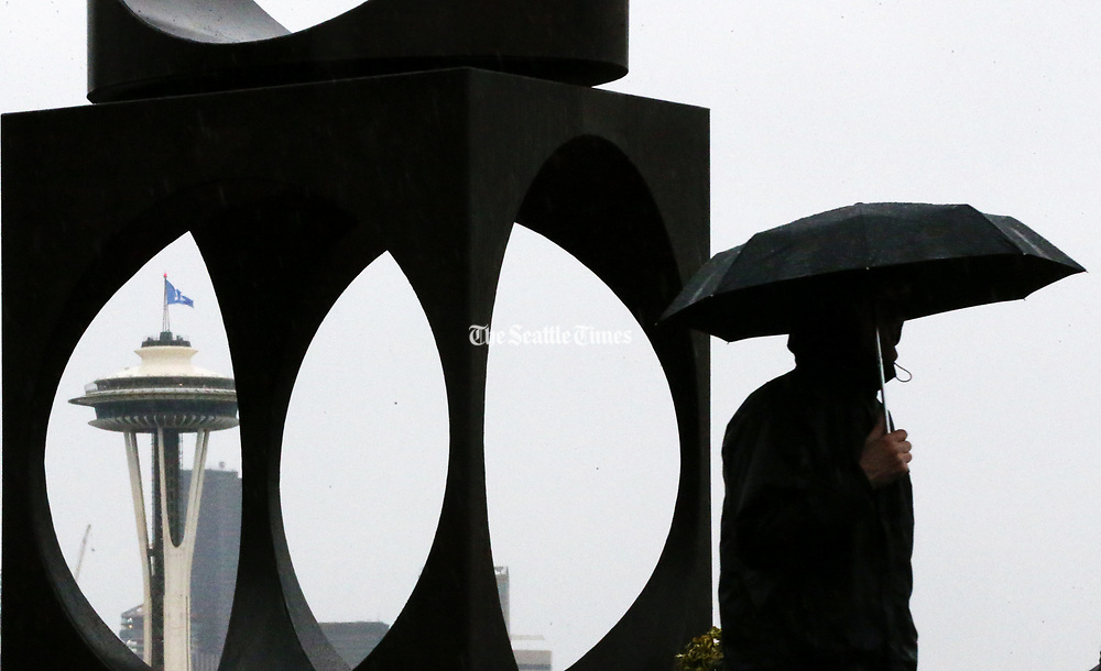 """The umbrellas are back out in Seattle, as a man passes """"Changing Form,"""" the Kerry Park sculpture by Doris Chase. (Ken Lambert / The Seattle Times)"""