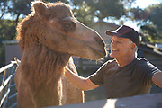 Senior adult smiling with camel