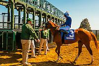 Keeneland Racecourse, Lexington, Kentucky USA.