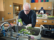 "26 FEBRUARY 2020 - FARMINGTON, MINNESOTA: BOB BRIGGS, from Farmington, a volunteer at the community dinner at Faith Church, washes bok choy before the dinner. Faith Church is a United Methodist Church in Farmington, MN, about 30 minutes south of the Twin Cities. The dinner is sponsored by Loaves & Fishes, a Christian organization that provides food for community dinners and foodbanks. Farmington, with a population of 21,000, is a farming community that has become a Twin Cities suburb. The city lost its only grocery store, a Family Fresh Market, in December, 2019. The closing turned the town into a ""food desert."" In January, Faith Church started serving the weekly meals as a response to the store's closing. About 125 people per week attend the meal at the church, which is just a few blocks from the closed grocery store. The USDA defines food deserts as having at least 33% or 500 people of a census tract's population in an urban area living 1 mile from a large grocery store or supermarket. Grocery chains Hy-Vee and Aldi both own land in Farmington but they have not said when they plan to build or open stores in the town.      PHOTO BY JACK KURTZ"