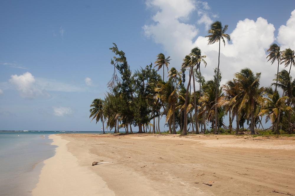 Foto: Miguel Pereira<br /> Luquillo, Puerto Rico