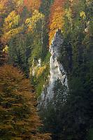 Dambovita Valley, Piatra Craiului, Transylvania, Southern Carpathians, Romania