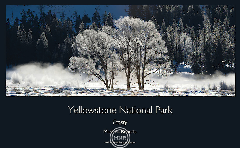 A Frosty Morning in the Lamar valley of Yellowstone National Park.