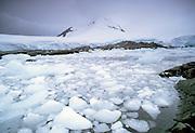 Icebergs and iceflow at the Antarctic Peninsula, Antarctica