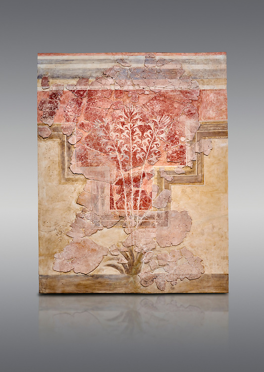 Minoan fresco panel from the 'Lily Frescoes' from the 'Villa of the Lilies' Amnisos, 1600-1500 BC. Heraklion Archaeological Museum.  Grey Background. <br /> <br /> Ths freco depicts white lilies against a red background and red lilies against w white backgoround with long stems in front of a fence. The wall art uses fresco and 'in cavo' technique. Neopalatial Period. .<br /> <br /> If you prefer to buy from our ALAMY PHOTO LIBRARY  Collection visit : https://www.alamy.com/portfolio/paul-williams-funkystock/minoan-art-artefacts.html . Type -   Heraklion   - into the LOWER SEARCH WITHIN GALLERY box. Refine search by adding background colour, place, museum etc<br /> <br /> Visit our MINOAN ART PHOTO COLLECTIONS for more photos to download  as wall art prints https://funkystock.photoshelter.com/gallery-collection/Ancient-Minoans-Art-Artefacts-Antiquities-Historic-Places-Pictures-Images-of/C0000ricT2SU_M9w