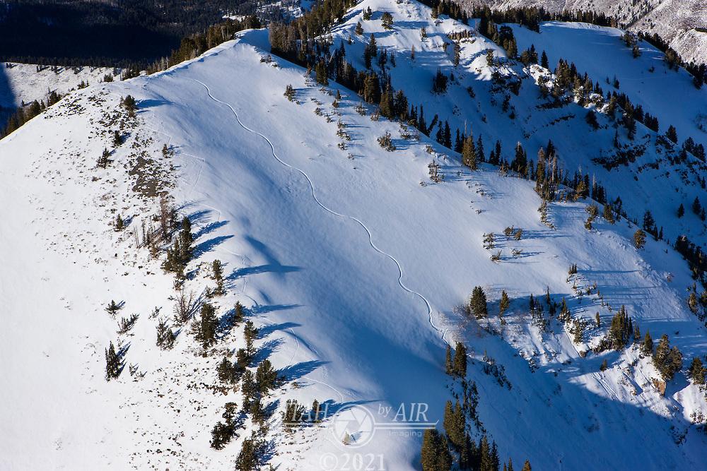Ski tracks in American Fork Canyon