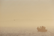 A fishing boat in the water off the coast of Cape Town, South Africa