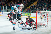KELOWNA, CANADA - JANUARY 3: Justin Kirkland #23 of Kelowna Rockets scores a goal against Ty Edmonds #35 of Prince George Cougars on January 3, 2015 at Prospera Place in Kelowna, British Columbia, Canada.  (Photo by Marissa Baecker/Shoot the Breeze)  *** Local Caption *** Justin Kirkland; Ty Edmonds;