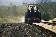 Tractor Ploughing Field, preparing to plant lettuce, Rural Australia