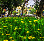 Hoan Kiem Lake shore next to the Old Quarter in Hanoi.  Tourists transportation is lined up past the flowers. <br /> <br /> iPhone