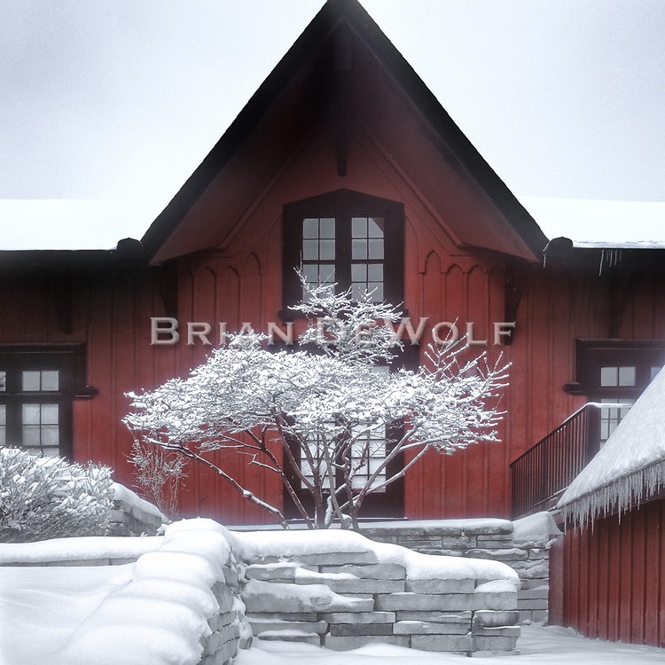 """This is an open edition print. Canvas prints have a 2 inch black border so it can be gallery wrapped. The print is made using pigmented inks on museum-grade canvas or watercolor paper. Each print also gets a light coating of lacquer protective spray. Each print is hand signed by Brian DeWolf.  Snow adorns the little tree outside the Depot Museum in Batavia, IL.  The gray day provided a stark simplicity of colors.  Aspect ratio is 1""""w x 1""""h."""