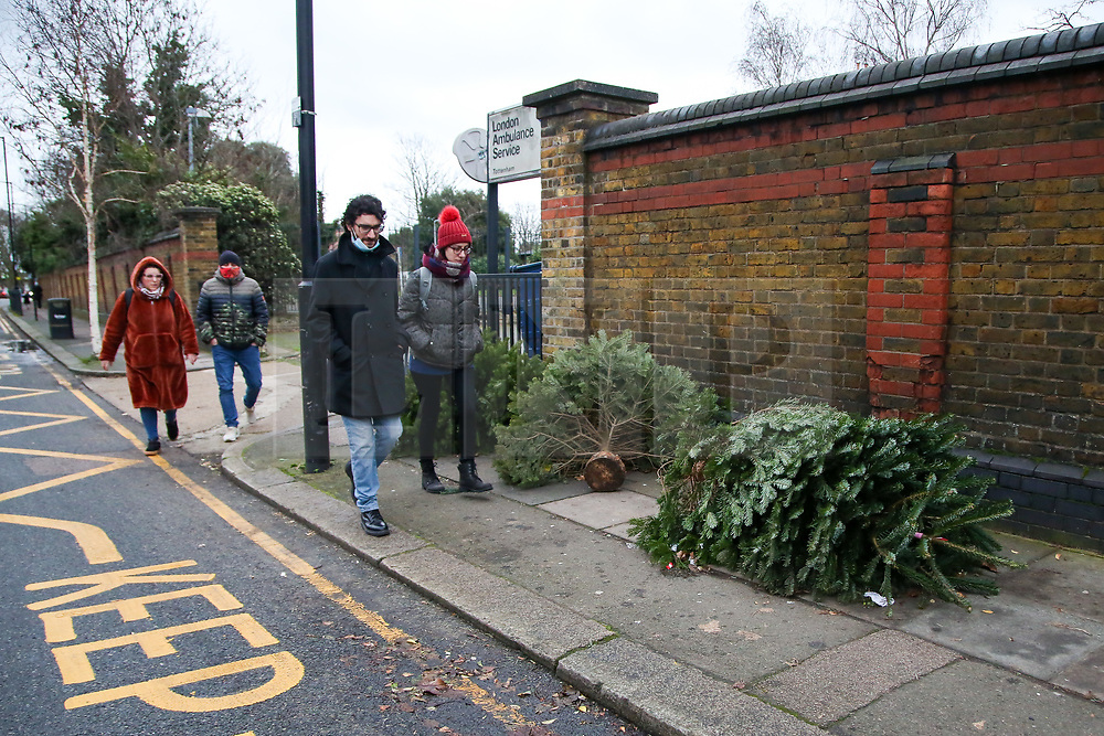 © Licensed to London News Pictures. 26/12/2020. London, UK. Members of the public walk past a line of discarded Christmas trees on a pavement in Haringey, north London on Boxing Day. Traditionally Christmas decorations including the tree are taken down on Twelfth Night after Christmas Day. Photo credit: Dinendra Haria/LNP