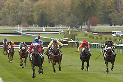 October 28, 2017 - Compiegne, France, France - Course 3 - Angel s Share - David Gallon (Credit Image: © Panoramic via ZUMA Press)