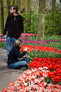 Woman photographing flowers at the Keukenhof tulip and flower show in Lisse, Holland - Netherlands Editorial Use only.