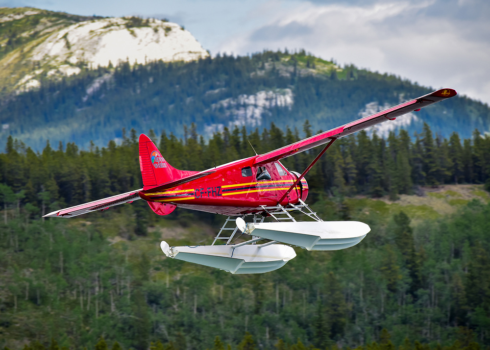A classic Canadian aircraft...An Alpine Aviation DHC-2 Beaver climbs into the Yukon skies  from Schwatka Lake