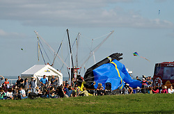 © Licensed to London News Pictures. 31/08/2013. Bristol, UK.  A scuba diver kite lands in the crowd at The Bristol International Kite Festival at Ashton Court Estate.  The kite was recovered and re-flown and there were no reported injuries.  Guest flyers from across the world have flown in specially to create a  spectacle of both special shaped kites, and team displays. 31 August 2013.<br /> Photo credit : Simon Chapman/LNP