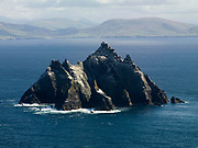 Gannets, Ireland's largest seabirds, fly around Little Skellig Rock at the weekend, the largest colony  in Ireland. Later in October the birds will migrate towards the west coast of Africa beforre returning again next Spring.<br /> Picture by Don MacMonagle