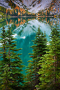 Larch trees at Crystal Lake in the Enchantment Lakes wilderness