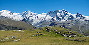 From Zermatt, hike the scenic Höhbalmen Höhenweg loop via Bergrestaurant Edelweiss, Trift Hut and Zmutt, in the Pennine Alps, Switzerland, Europe. With delightful views of the Matterhorn plus other peaks and glaciers, this strenuous walk went up and down 1200 meters over 21.6 km (13.4 miles). This image was stitched from multiple overlapping photos.