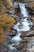 Tangle Crrek Falls in Jasper National Park