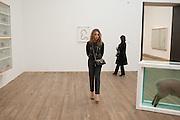 JEANNE MARINE, Damien Hirst, Tate Modern: dinner. 2 April 2012.