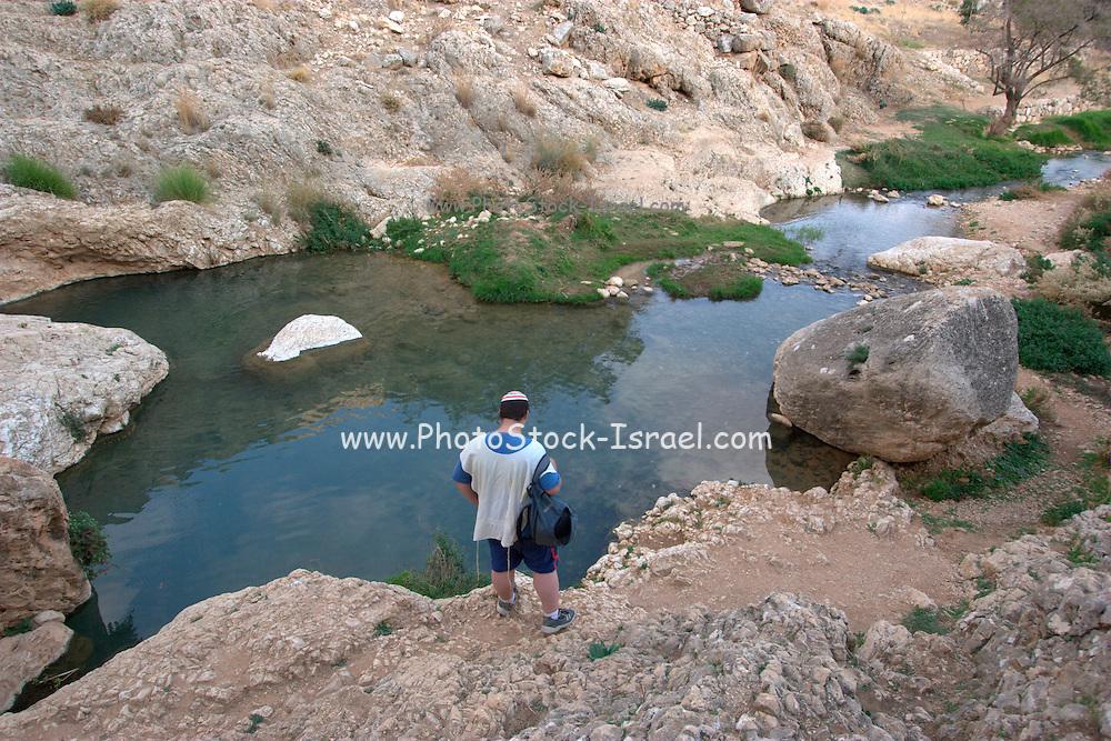 Israel, Jordan Valley, Wadi Qelt offroad hiking The natural spring
