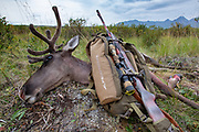 Heidi Anderson's cow caribou taken with her father's rifle during the 2019 subsistence hunt for Alaskan residents.