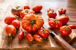 Close-up of variety of tomatoes with knife on cutting board, Munich, Bavaria, Germany