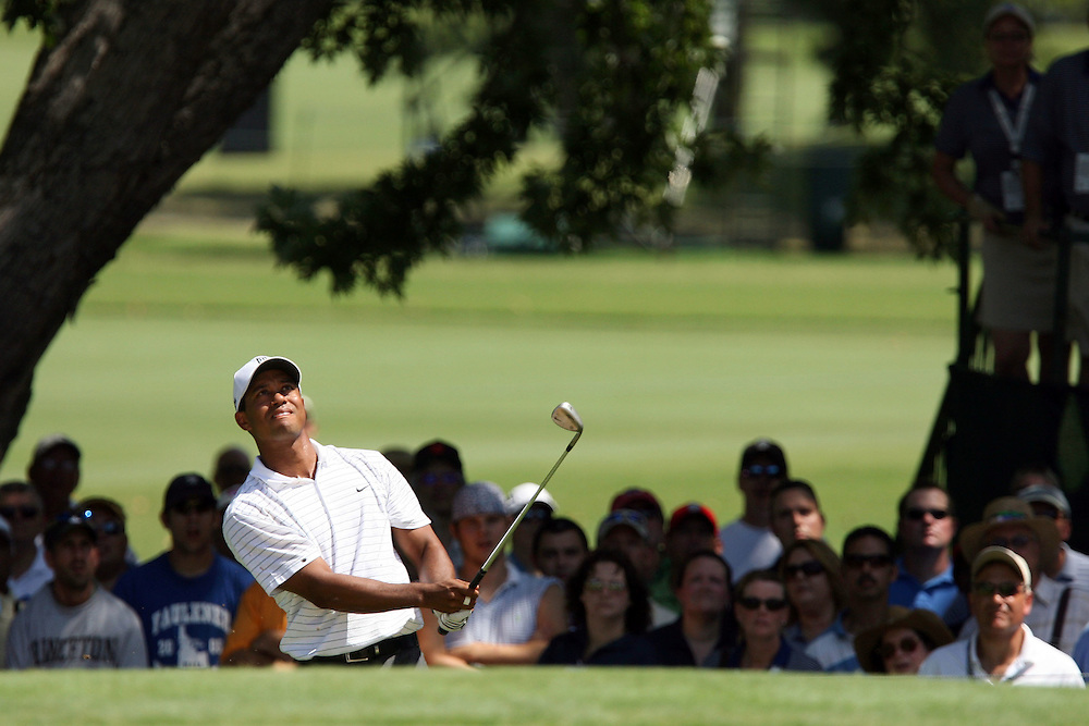 09 August 2007: Tiger Woods chips onto the 4th green during the first round of the 89th PGA Championship at Southern Hills Country Club in Tulsa, OK.