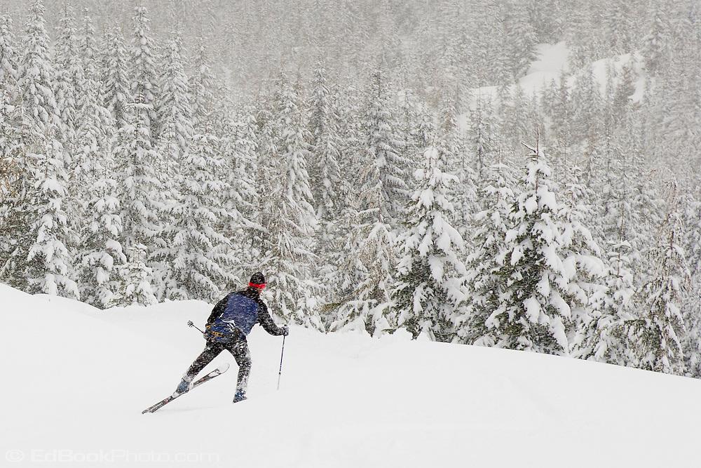 A cross country skier strides into new snow along the Rainier Vista Trail of the Mount Tahoma Trails in the Washington state Cascade Mountain Range near Mount Rainier. USA
