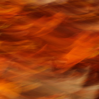 """""""Sweet Potato Mash"""" <br /> <br /> Enjoy the wonderful warm fall hues in this flaming abstract!"""