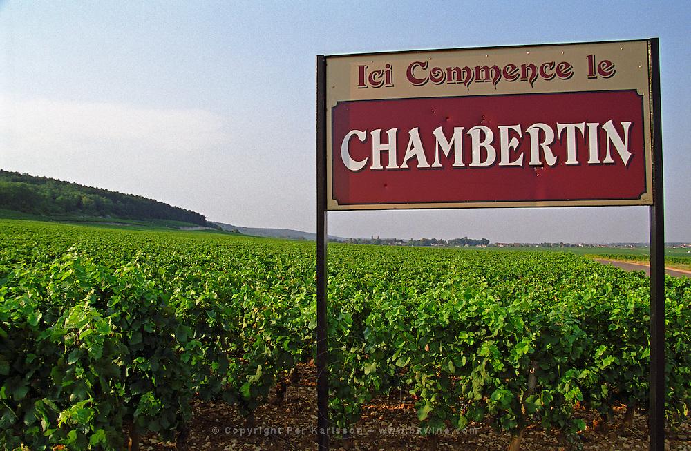 Sign Ici commence le Chambertin here begins Chambertin, here's where the grand cru vineyard begins, Bourgogne