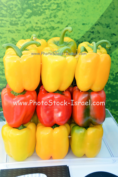 Display of red and yellow bell peppers in a farmer's market