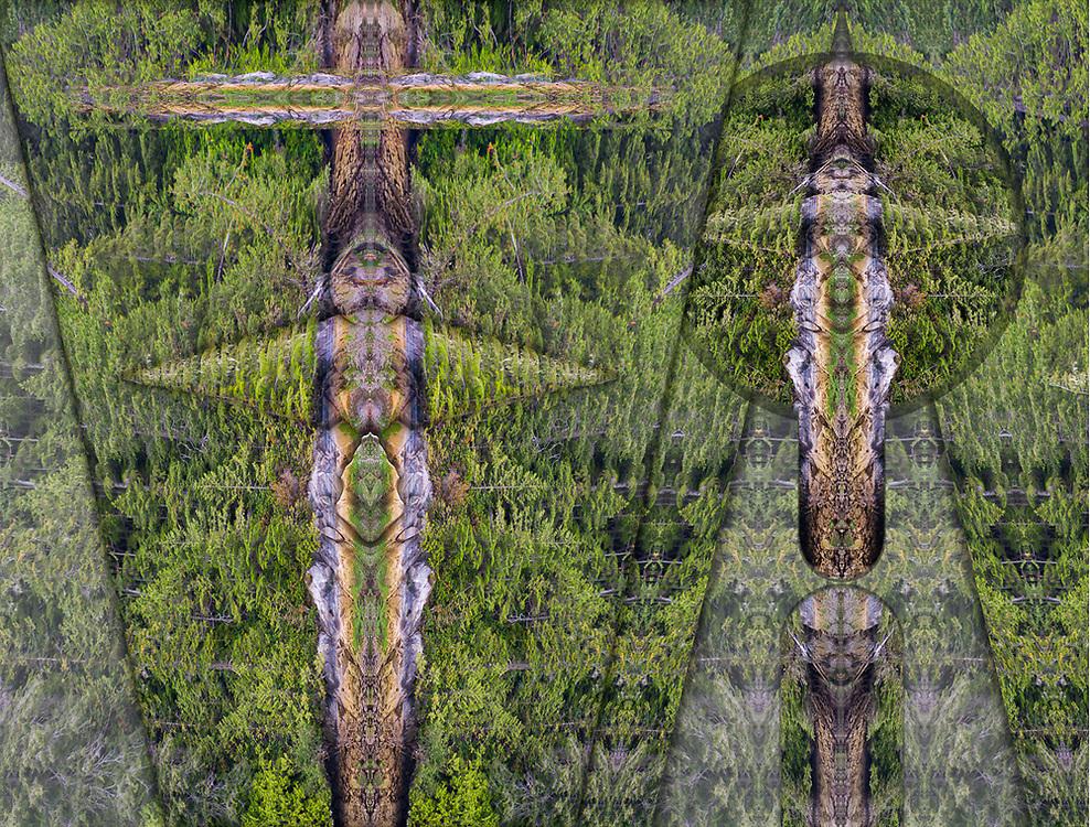 """The Totem Sanctuary"" derivative image, work-in-progress, Broughton Islands Archipelago, Salish Sea, British Columbia, Canada"