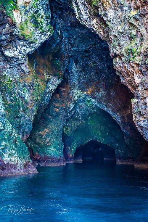 Painted Cave, Santa Cruz Island, Channel Islands National Park, California USA