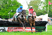 24  March, 2012:  Mark Watts (left) and SUMO POWER clear the last with EMBEZZLE and Robbie Walsh in the Maiden Claiming Hurdle at Aiken.