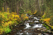 Hylite Creek near Bozeman, Montana.